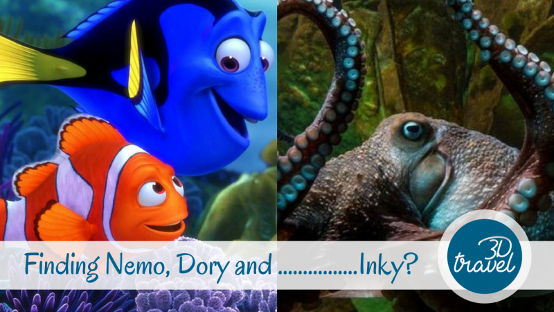 Finding-Nemo-Dory-Inky-Cover